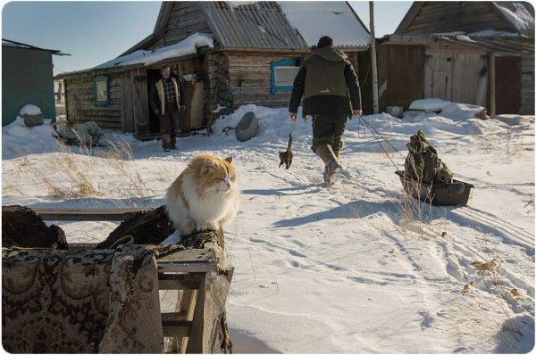 Татьяна Выборнова - Жизнь жёлтого кота-рыбака (http://fotokto.ru/id93384)