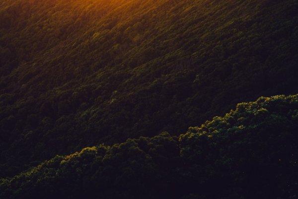 Природные пейзажи