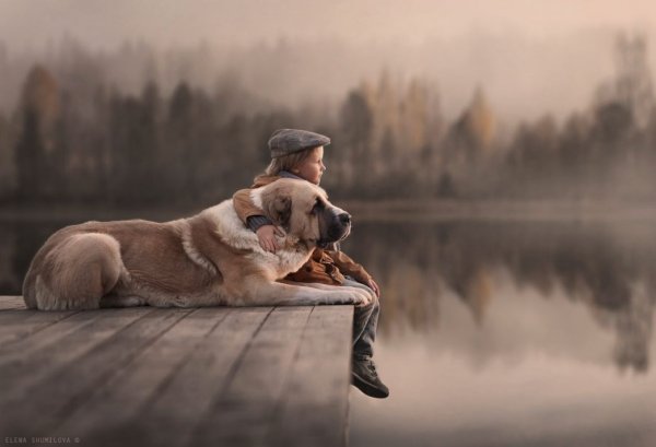Elena Shumilova Autumn lake