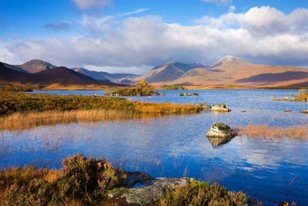 15 фото пейзажи природы