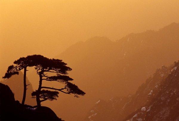 красивые фотографии природы