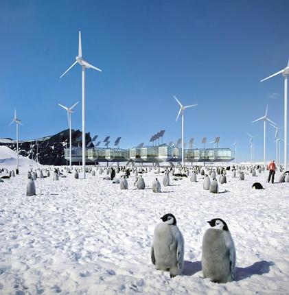 Алексей Козырь, Илья Бабак. Антарктическая оранжерея «Мак полярный»