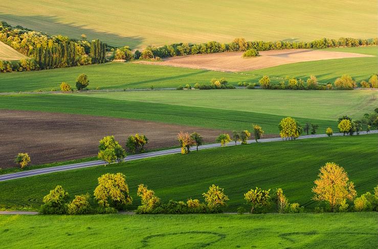 Пейзажи от Даниэль Рерич - №5