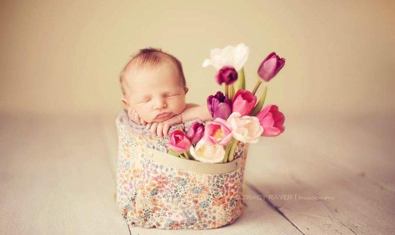 Спящие младенцы в фотографиях Трейси Рейвер - №3