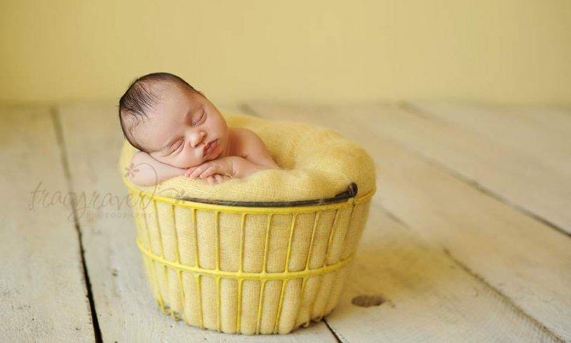 Спящие младенцы в фотографиях Трейси Рейвер - №27