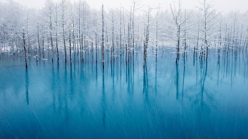Ландшафтная сказка в фотографиях Кента Шираиши - №1
