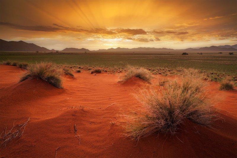 Фантастическая Намибия в объективе Хоугарда Малана - №31
