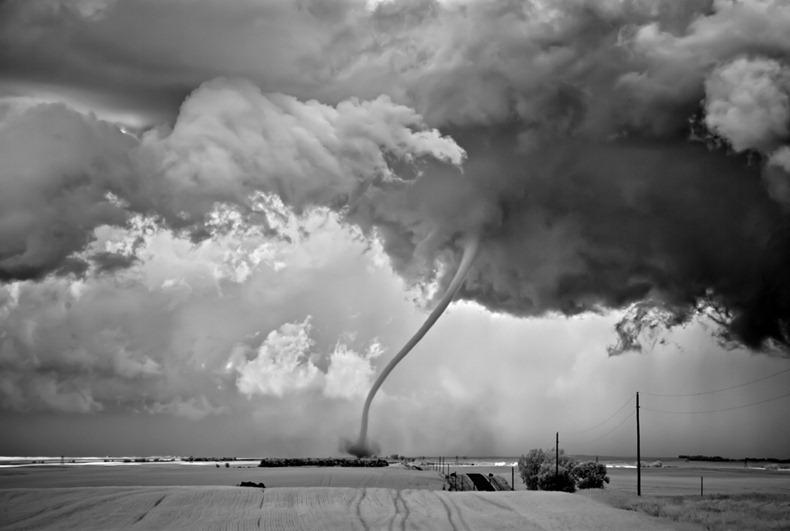 Черно-белые бури Митча Добраунера - №4