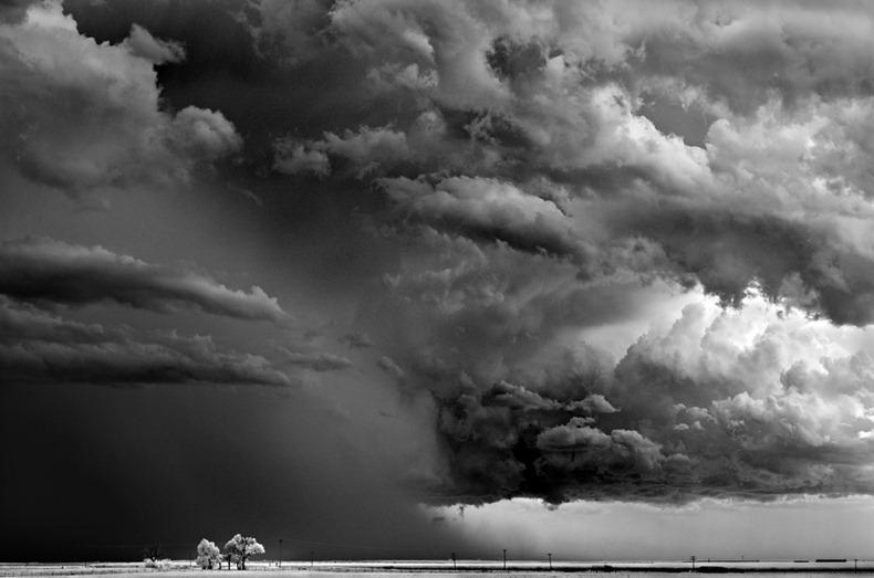 Черно-белые бури Митча Добраунера - №12