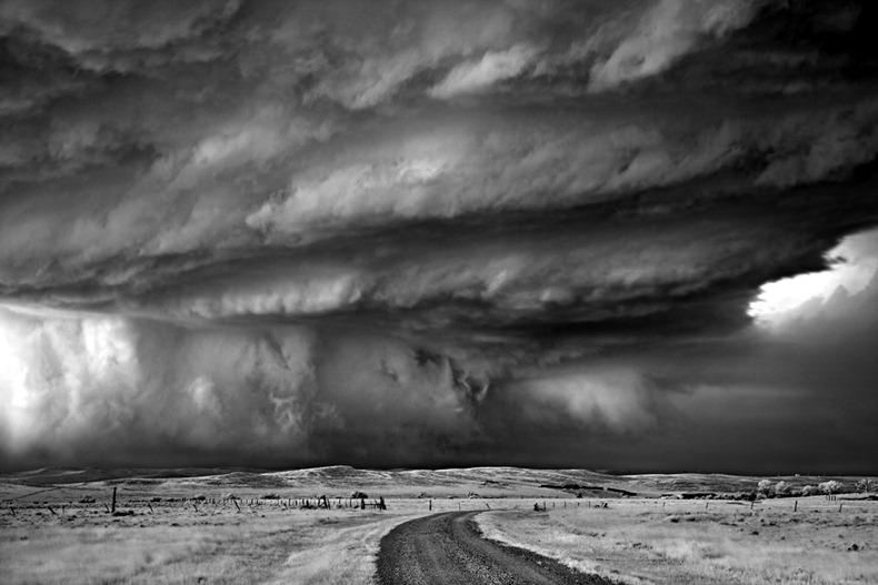 Черно-белые бури Митча Добраунера - №16