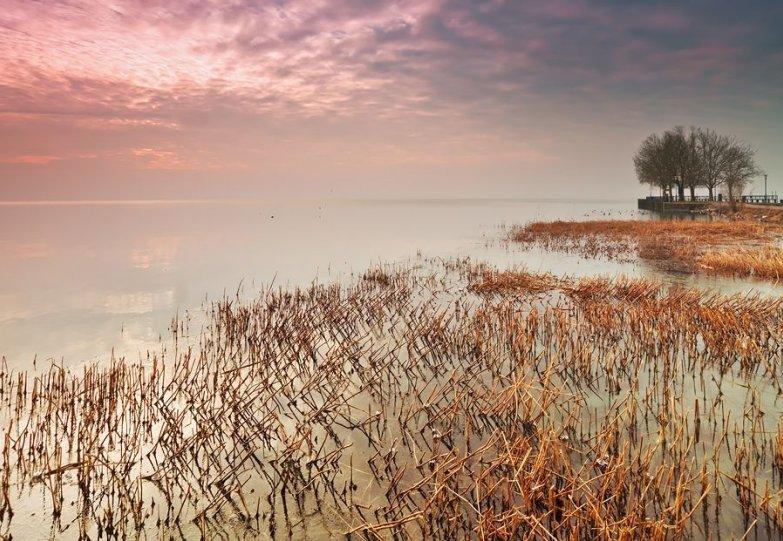 Адам Добровиц и его удивительные пейзажи - №41