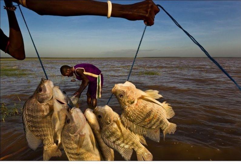 Жизнь Африки в объективе Брента Стиртона - №5