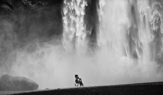 Фотограф David Yarrow - №2