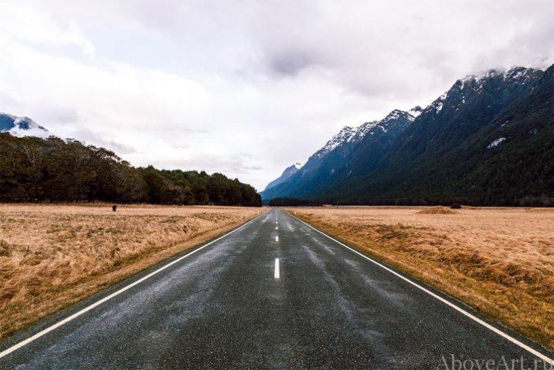 Albert Oriol «Дороги новой Зеландии» - №5