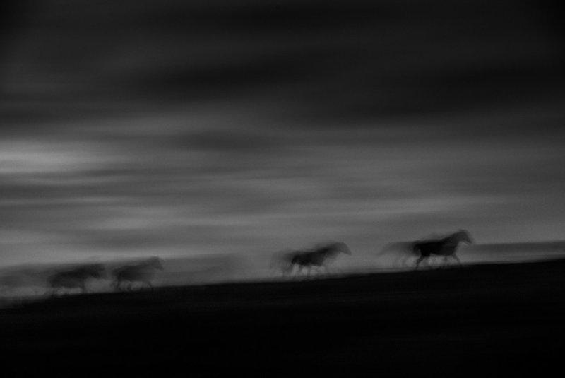 Фотограф Eliseo Miciu - №12