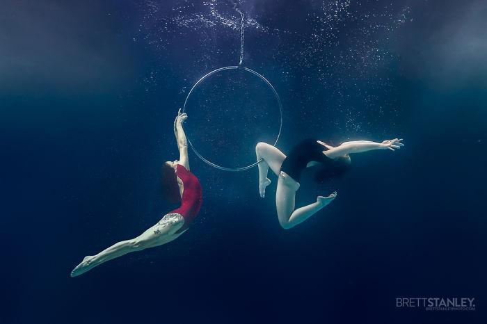 """Brett Stanley """"Подводный цирк"""" - №2"""