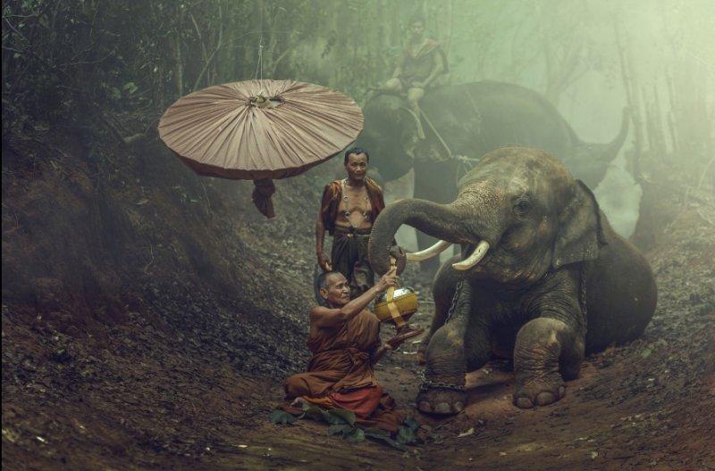 """""""Азия"""" в фотографиях Jakkree Thampitakku - №17"""