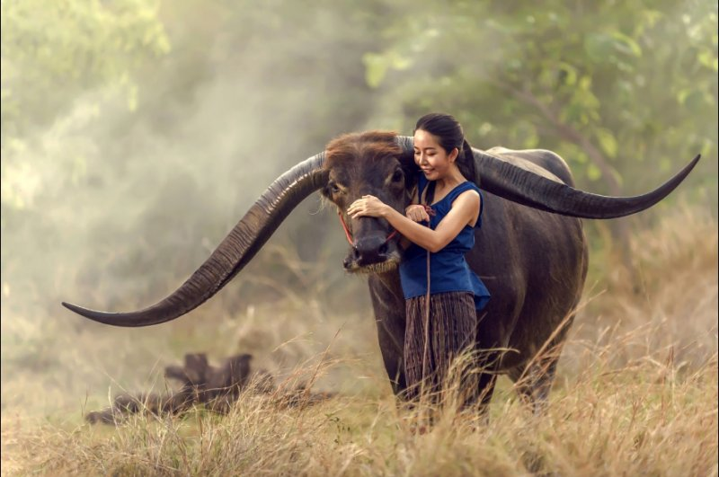 """""""Азия"""" в фотографиях Jakkree Thampitakku - №21"""