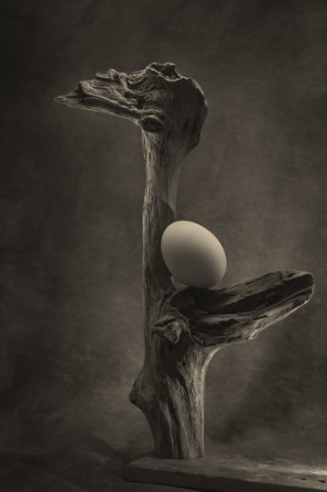 Фотограф Уильям Кастеллана - №26