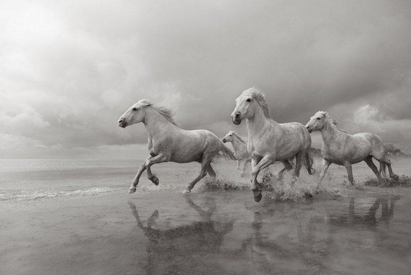 Фотограф Дрю Доггетт - №9