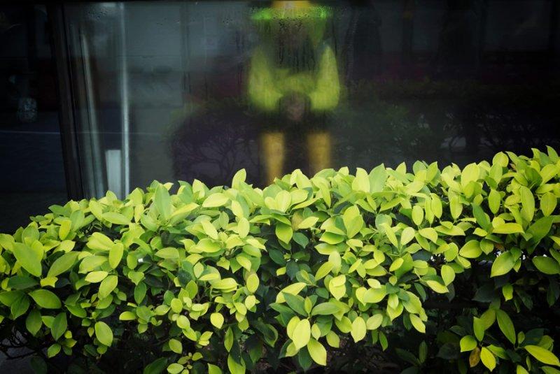 Фотограф Эдас Вонг - №20