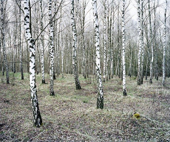 Фотограф Даниэль Коваловский - №4
