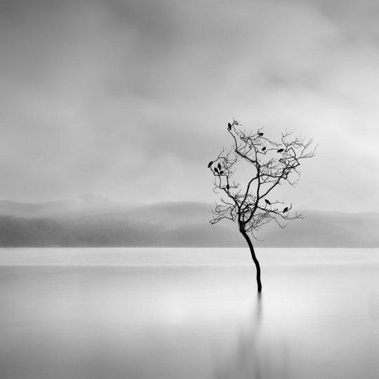 Фотограф Джордж Дигалакис - №12