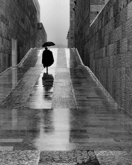 Фотограф Руи Палья - №17