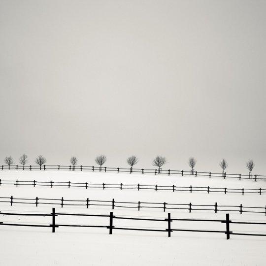 Фотограф Йозеф Хофленер - №19