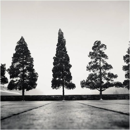 Фотограф Йозеф Хофленер - №23