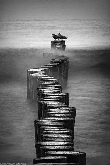 Красота минимализма в фотографиях Павла Франика - №2