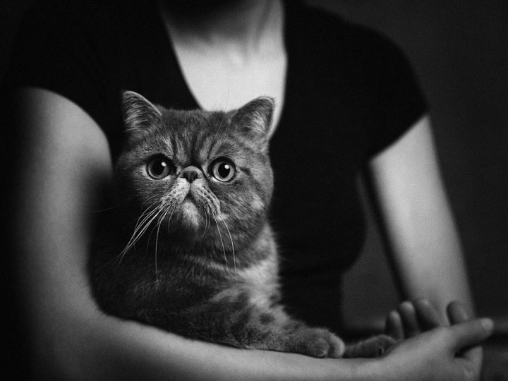 Фотограф Винсент Лагранж - №5