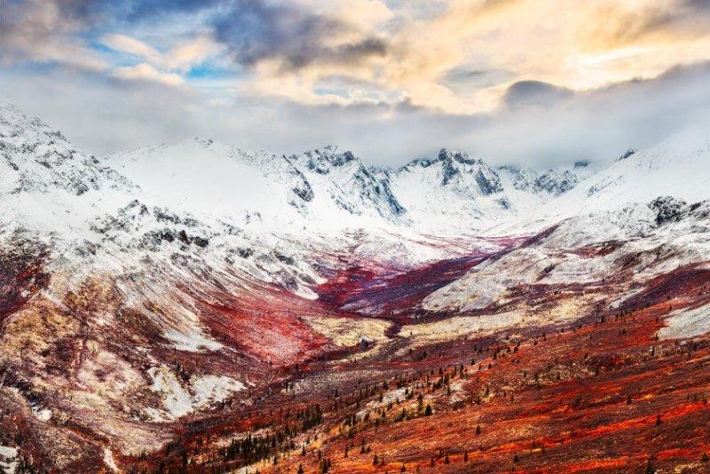 Первозданная красота природы в пейзажной фотографии - №3