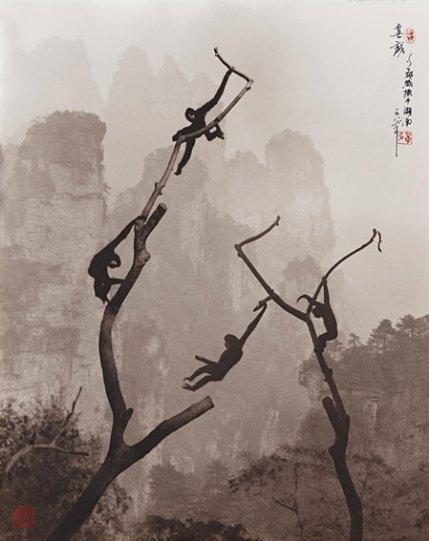 Фотограф Дон Хонг-Оай - №24