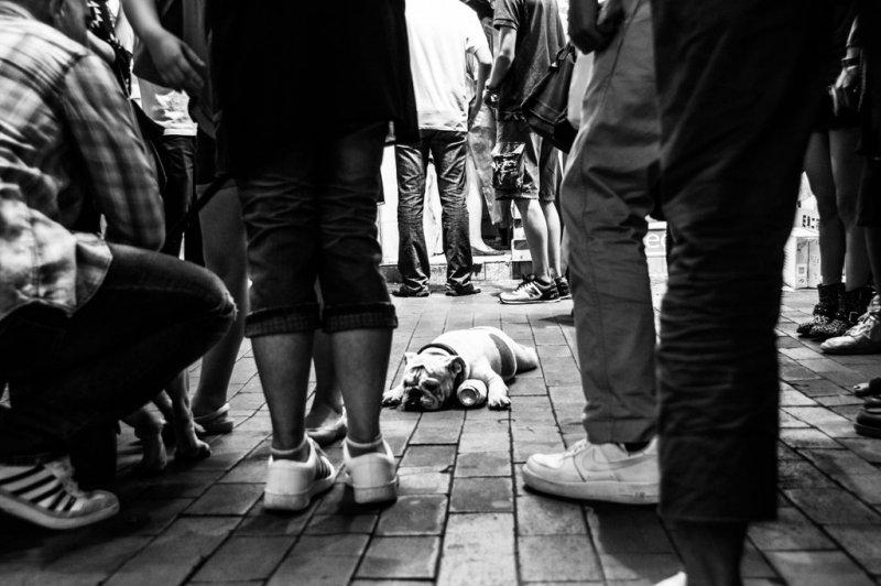Фотограф Ксиза Круз Бакани - №15