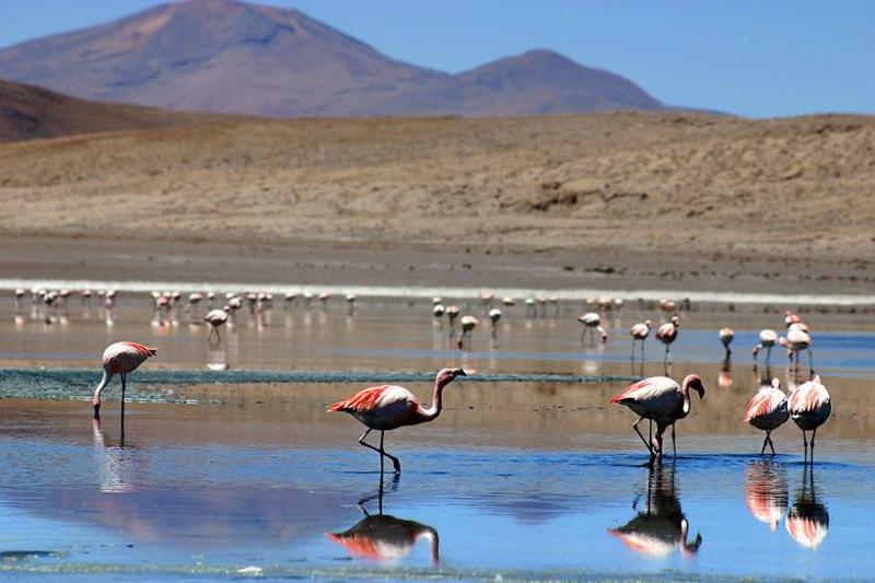 Боливия, провинция Сур-Липез