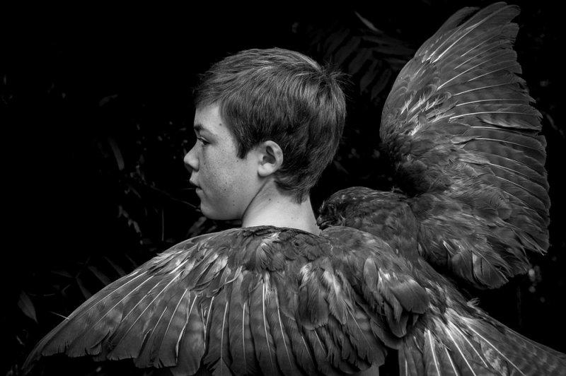 «Птица». Автор фото: Айса Бекерт, Бельгия.