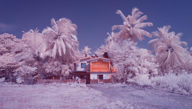 Фотограф Нимит Нигам - №11