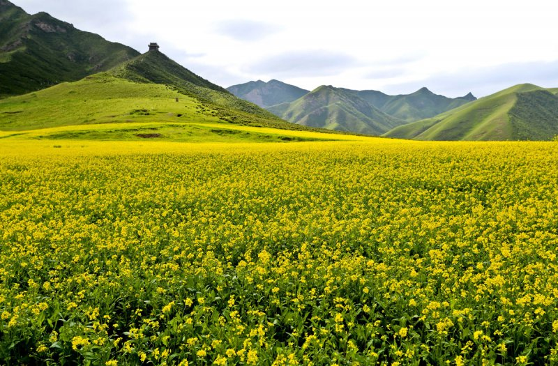 Красивые пейзажи китайской провинции Ганьсу - №3