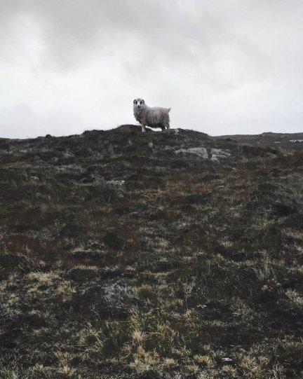 Фарерские острова от Василия Воротникова - №10
