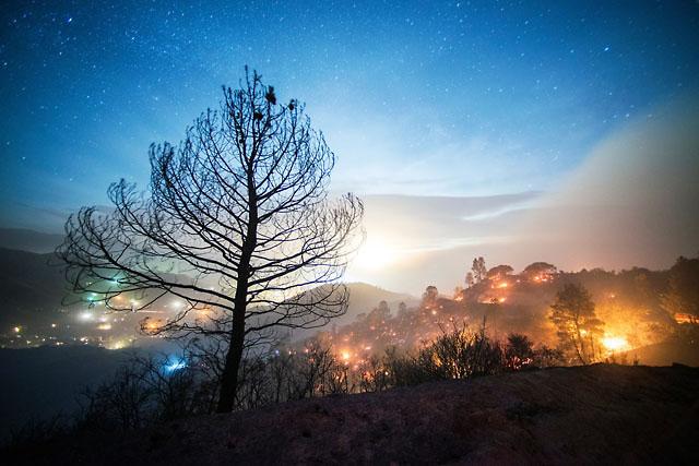 Фотограф Стюарт Пелли - №10