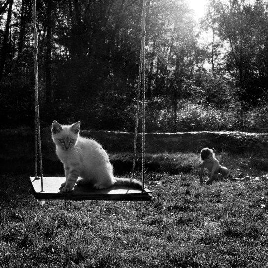 Фотограф Alain Laboile - №7
