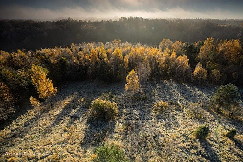 Фотограф Andrei Reinol - №8