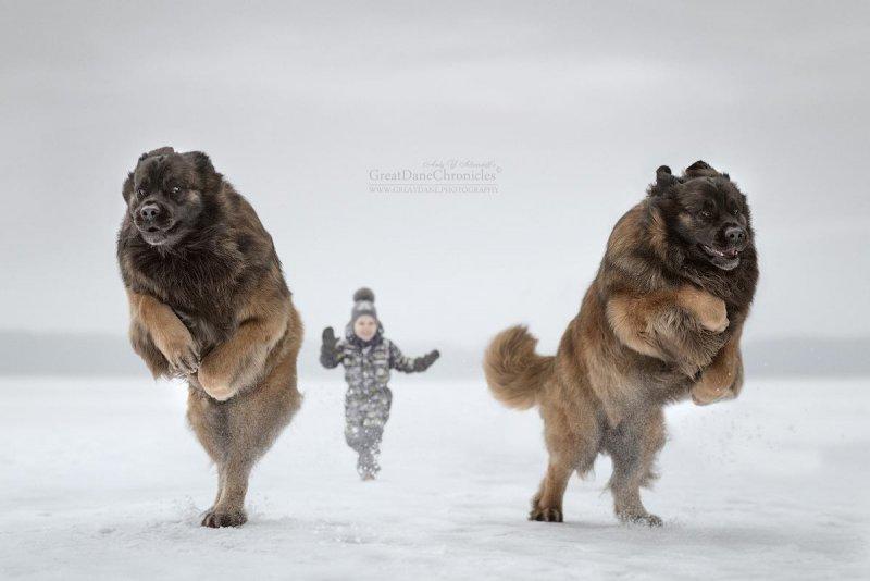 Фотограф Андрей Селиверстов - №3