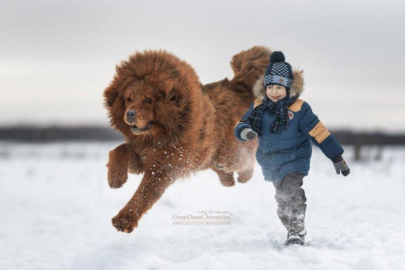 Фотограф Андрей Селиверстов - №7