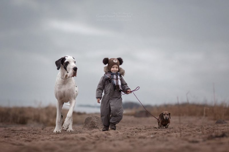 Фотограф Андрей Селиверстов - №15