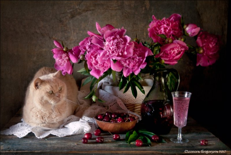 Фотограф Элеонора Григорьева - №5