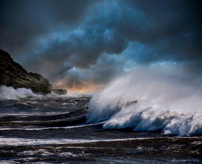 Фотограф Dalton Portella - №8