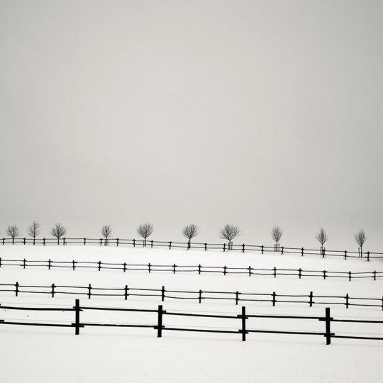 Фотограф Йозеф Хофленер - №10