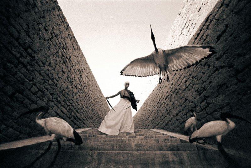 Фотограф Грегори Кольбер - №21